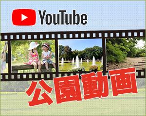 公園動画公開中